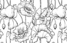 black-white-illustrated-flowers-plain