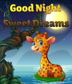 Good Night Cards, Cute Good Night, Good Night Greetings, Good Night Sweet Dreams, Good Night Moon, Good Morning Good Night, Good Evening Wishes, Good Night Wishes, Good Night Quotes