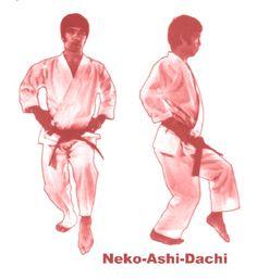 Kokutsu-Dachi (Koh kutsu) Long sound on Koh 後屈立ち Taekwondo, Jiu Jitsu, Shotokan Karate Kata, Kempo Karate, Karate Moves, Goju Ryu, Gym Bag Essentials, Kyokushin, Self Defense Tips