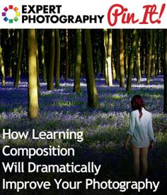 How Learning Composition Will Dramatically Improve Your Photography...or Sweeps can take your photos!   http://www.sweeps.jobs