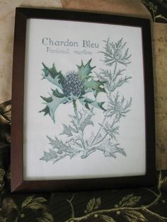 Chardon Blue