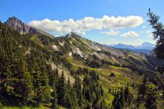 Trail to Lakeview Ridge, Pacific Crest Trail, Pasayten Wilderness | Flickr - Photo Sharing!