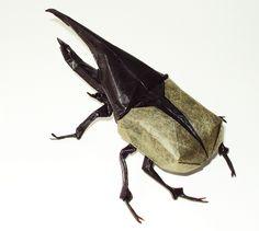 Hercules Beetle by Satoshi Kamiya, folded by me | Flickr - Photo Sharing!