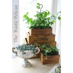 Rustic Wooden Herb Boxes -Nesting Herb Boxes Set of 4 -Reclaimed Wood... ($159) ❤ liked on Polyvore featuring home, home decor, small item storage, wooden box, reclaimed wood planter, wood planter, wood box and wooden planters