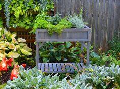 http://www.kellogggarden.com/wp-content/uploads/2018/01/growing-herbs-tea.jpg
