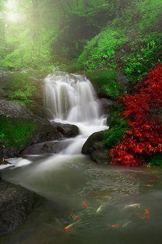Waterfall - Deylaman, Guillan, Iran