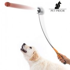 The Pet Prior premium ball thrower for dogs is a quality toy with which you can share hours of fun and play with your pet. Ball Thrower, Ball Launcher, Black Banner, Love Your Pet, Large Animals, Shop Logo, Cat Toys, Background Patterns, Dogs