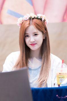 Chorong a pink South Korean Girls, Korean Girl Groups, Kpop, Pink Panda, Eun Ji, Fandom, Fans Cafe, Seolhyun, Cube Entertainment