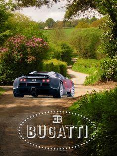 Bugatti Veyron  ©