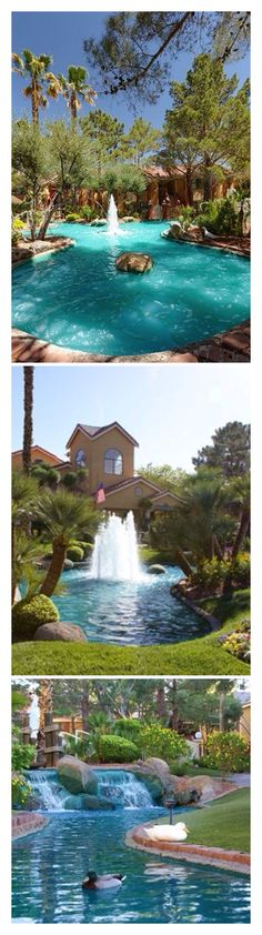 Luxury Pools and water features