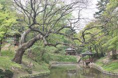 South Korea Südkorea Seoul Changdeokgung Palace Palast Secret Garden