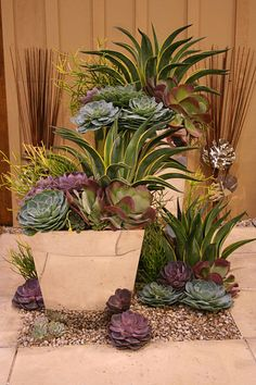 Succulents in containers – 48 Totally Inspiring Desert Garden Design Ideas For Your Backyard – Garden İdeas Succulents In Containers, Container Plants, Cacti And Succulents, Planting Succulents, Container Gardening, Planting Flowers, Artificial Succulents, Potted Plants, Container Flowers
