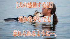 【犬の感動する話】「痛みを少しでも忘れられるように…。」【1分涙腺崩壊】  今、ある飼い主と老いたペットの写真がネットユーザー達の胸を打っている。男性と犬が湖の中にたたずむ写真。その老犬は重い関節炎を患い動くこともままならない。男性は少しでも痛みから解放しようと、愛犬を抱え毎日湖に連れて行っているのだ。   ☆☆☆☆☆☆ 涙腺崩壊-1分で感動!では、 泣ける話、感動する話を 厳選して配信しています。   音と画像で心震える感動を…。  チャンネル登録すると 新しい動画がスグに見れます☆ ▼▼▼ http://www.youtube.com/subscription_center?add_user=namidaafureru
