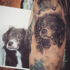 #tattoo #ddttattoo #ddttattooshop #evasempreio #evasempreioddttattoo #evatattoo #blackandgray #art #portrait #dog