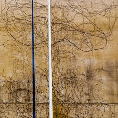 shade pole creeper on concrete - a casual contemporary artwork in nice