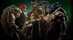 Which Teenage Mutant Ninja Turtle Are You? - Which one of the Teenage Mutant Ninja Turtles are you most like; Donatello, Michelangelo, Leonardo, or Raphael? Teenage Mutant Ninja Turtles, Ninja Turtles 2014, Ninja Turtles Movie, Ninga Turtles, Turtle Movie, Turtle Time, Teenage Ninja, John Bishop, Michael Bay