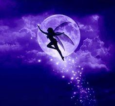 Fee Mond