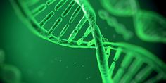 Could Ireland Hold the Genetic Codes to Crack Serious Diseases? | AbbVie