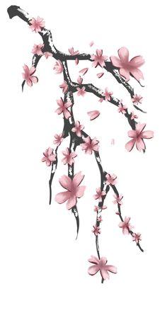tatuajes de cerezos diseños y significado - Taringa!