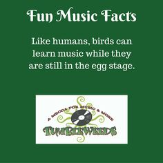 Enjoy some fun music facts #music #musicfacts #musictrivia