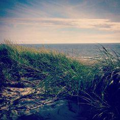 ... and relaxing in Bjerregaard, Denmark.