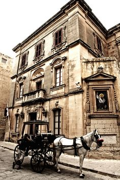 Mdina - Malta. Malta Direct will help you plan your getaway - http://www.maltadirect.com