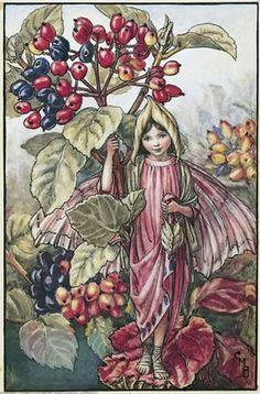 Cicely Mary Barker - Flower Fairies of the Autumn