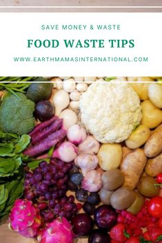 Food waste is not only an economic problem, but also a large scale environmental issue. There are so many ways we can cut down on food waste in our own homes, and save money! Check out these manageable and easy tips! Vegetarian Breakfast, Breakfast Recipes, Veggie Stock, Green Ideas, Green Kitchen, Food Waste, Stuffed Hot Peppers, Simple Things, Recipe Of The Day