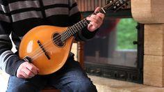collection of Irish mandolin lesson videos