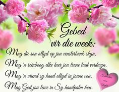 Good Morning Gif, Good Morning Quotes, Christian Prayers, Christian Quotes, Blessed Week, Afrikaanse Quotes, Goeie Nag, Goeie More, Inspirational Qoutes