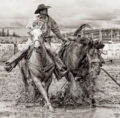 BRONC PICKUP 2 by Bev Pettit