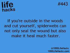 If you're outside in the woods and cut yourself, spiderwebs can not only seal the wound but also make it heal much faster.