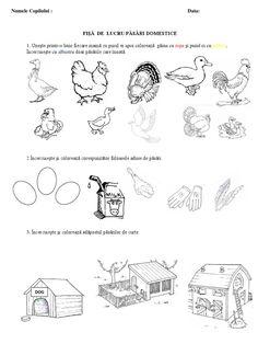 FISA PT LECTIE BUNAAA.pdf Peanuts Comics, Preschool, Pdf, Decor, Decoration, Kid Garden, Kindergarten, Decorating, Preschools