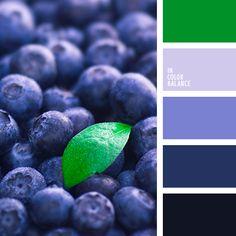 бледно-васильковый цвет, военно-воздушный синий цвет, голубой, зеленый, оттенки зеленого, оттенки салатового, оттенки синего, подбор пастельных тонов, подбор цвета для дизайнера, салатовый, светло-зеленый, светло-салатовый, синий, тёмно-зелёный, цвет