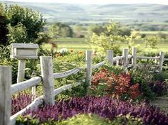 My dream country yard and view