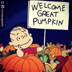 It's The Great Pumpkin Charlie Brown Quotes Classy It's The Great Pumpkin Charlie Brown  Charlie Brown Brown And