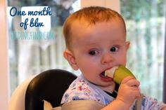 one month of baby led weaning