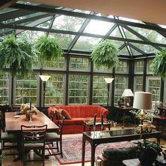 Sala de estar e jantar e casa de vidro. Mobiliario em madeira e sofá laranja