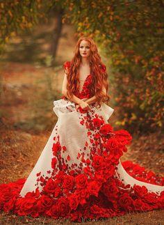 Rosy HOULDSWORTH (Wild Red wolf) – Google+