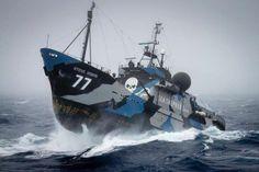 STEVE IRWIN Sea Shepherd ship - Badass Anti-Whaling Ship is Badass.