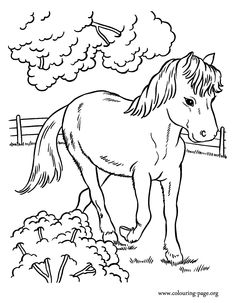 Image from http://www.colouring-page.org/sites/default/files/horses-printable-coloring-page-05.gif.