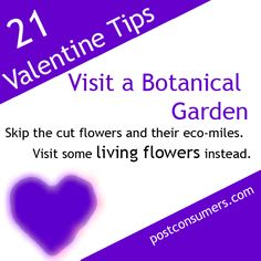 Number 18 on our list of Fun and Eco-Friendly Valentine's Day Ideas:     Skip the cut flowers and visit a botanical garden together instead.
