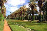 #Yurtdisi #YurtdisiTurlari #YurtdisiOtel - #AfrikaTurları - Fas Turu - Tur Programı      1. Gün İstanbul – Casablanca     Türk Havayolları, TK 617 sayılı uçağı ile 10:25′te, Casablanca'ya hareket ediyoruz. 4,5 saatlik uçuş sonrası yerel saatle 13:25'te varışımızda, oryantal ruhlu, beyaz şehir Casablanca'yı gezmeye Birleşmiş Milletler Meydanı ile ba...  http://www.ucuzyurtdisiturlari.com/fas-turu