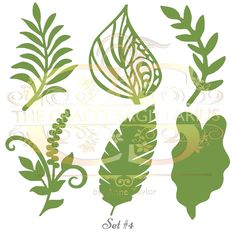 A personal favorite from my Etsy shop https://www.etsy.com/listing/570465571/svgpng-set-4-6-different-leaves-for
