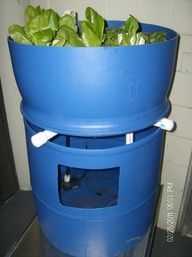 Single barrel Aquaponics