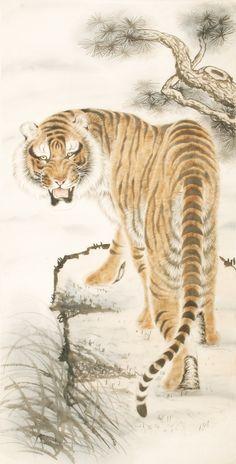Tiger - CNAG000001