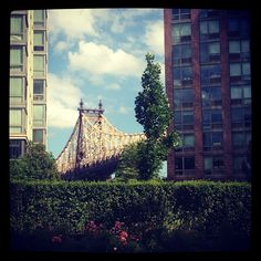 Roosevelt Island. Queensboro bridge.
