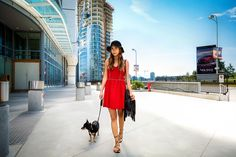 Get into get-things-done mode in this comfortable pairing of a red skater dress. Get a bit experimental when it comes to footwear and introduce a pair of black leather gladiator sandals to this outfit. Red Skater Dress, Skater Dresses, Leather Gladiator Sandals, Black Cross Body Bag, Personal Stylist, Lady In Red, Leather Crossbody Bag, Black Leather, Outfits