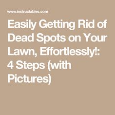 Easily Getting Rid of Dead Spots on Your Lawn, Effortlessly!: 4 Steps (with Pictures)