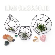 LoveGlassLenka on Etsy - glass terrariums etc